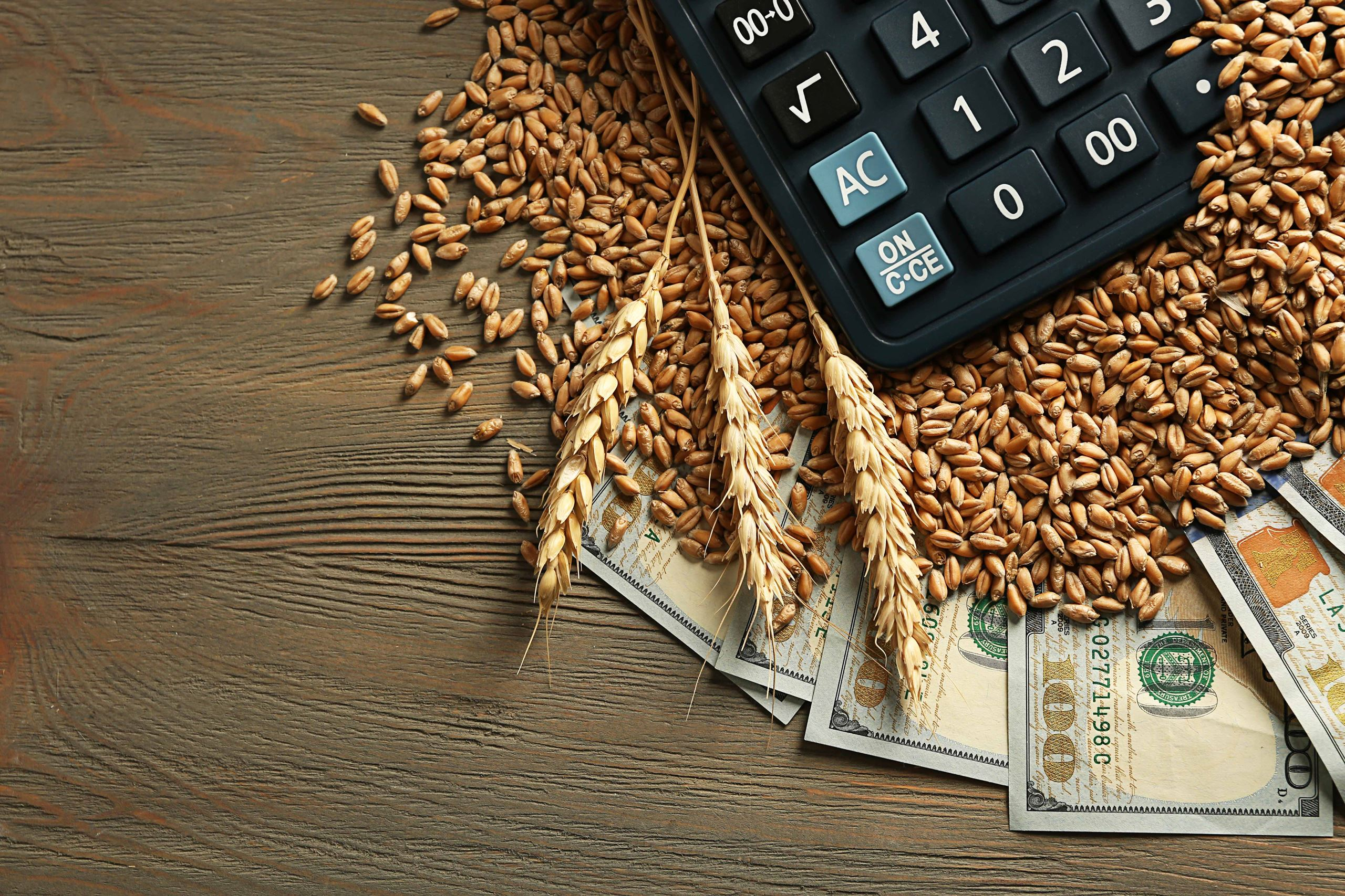 Calculator on top of wheat beans